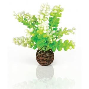 BiOrb Caulerpa groen aquarium decoratie (9.95 EUR)