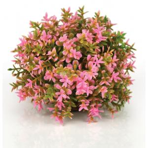 BiOrb bloemenbal roze aquarium decoratie (9.95 EUR)