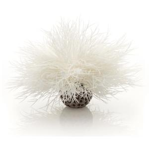 BiOrb zeelelie wit aquarium decoratie (8.95 EUR)